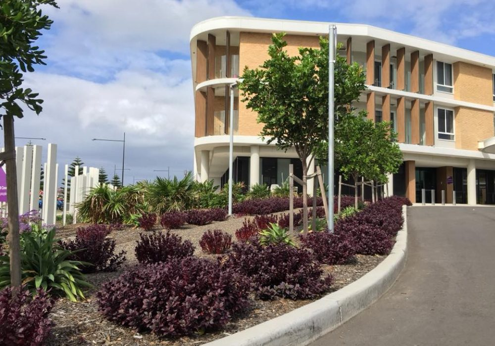 Warrigal-Care-in-Shell-Cove-1